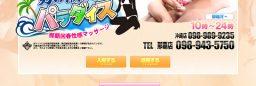 複数店舗割/システム連動型ホームページ(No-24143)