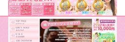 ナイトレジャー向け風俗求人サイト/風俗店用システムカスタマイズ(No-29183)