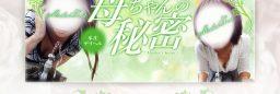 新規風俗店Webサイト/埼玉県本庄市のデリヘル/多数店舗契約割引(製作費無料、制作実績No-29545)